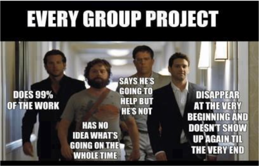 everygroupproject